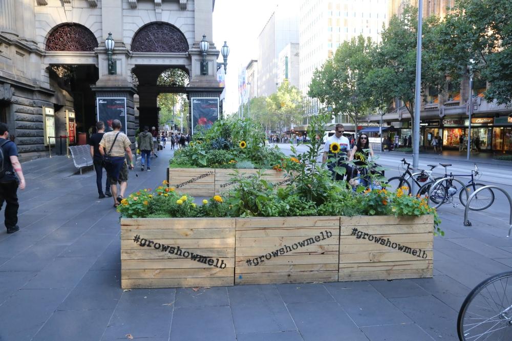 Swanson Street vege boxes